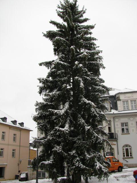 Weihnachtsbaum Schwarzenberg 2010