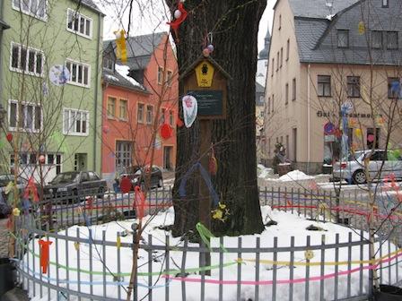 Königseiche Schwarzenberg
